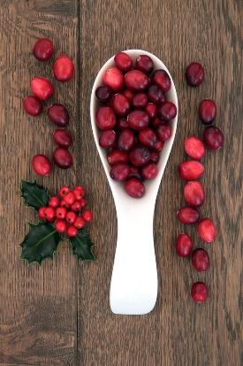 Cranberry Butter Bars